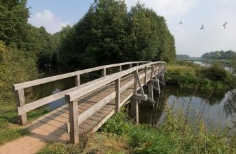 Eiken bruggen Berkelpad Eibergen