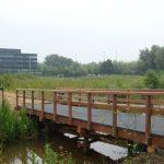 bruggen Universiteit Utrecht