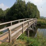 eiken bruggen Berkel Eibergen