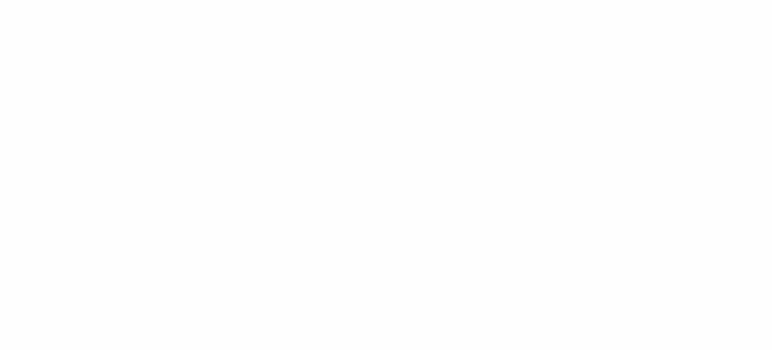 stalen bruggen Rijsenhout